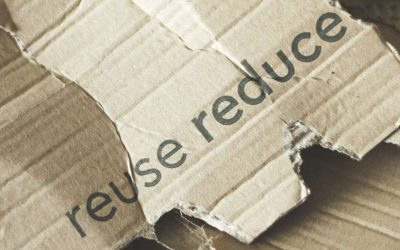 Top 3 ways to package clever for the environment